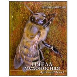 """Энциклопедия """"Пчела..."""
